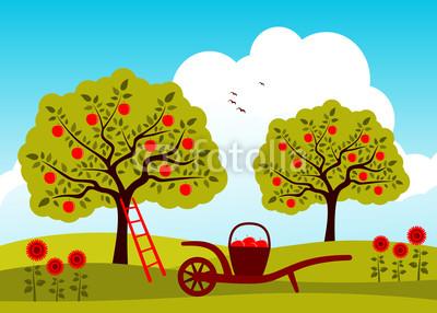 不知道什么时候,树下竟聚集了一群小孩子,正在捡掉落在地上的苹果.